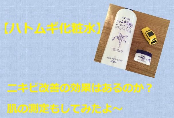 【肌の測定】ナチュリエのハトムギ化粧水の体験談。ニキビへの効果は!?